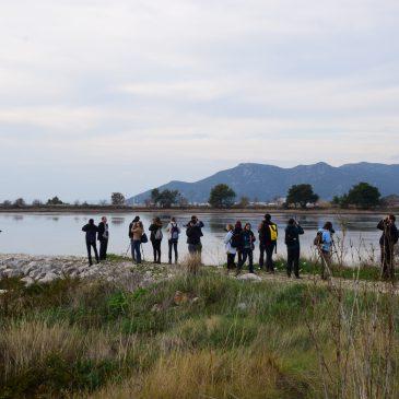 Poziv na Zimsko prebrojavanje ptica vodarica – siječanj 2019