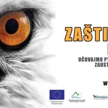 BiH i Crna gora u zaštiti ptica i borbi protiv krivolova