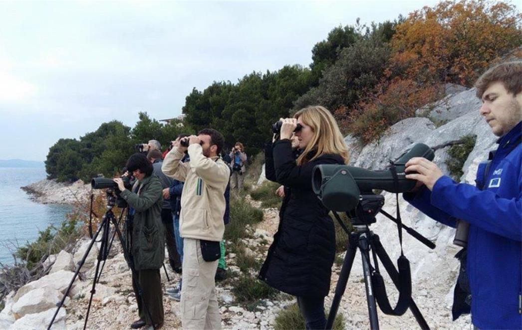 Radionica o monitoringu ptica vodarica zimovalica u mediteranskoj Hrvatskoj –Portal Oko