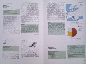 Atlas selidbe ptica Hrvatske - primjer teksta