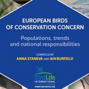 Nova publikacija BirdLife-a: European birds of conservation concern