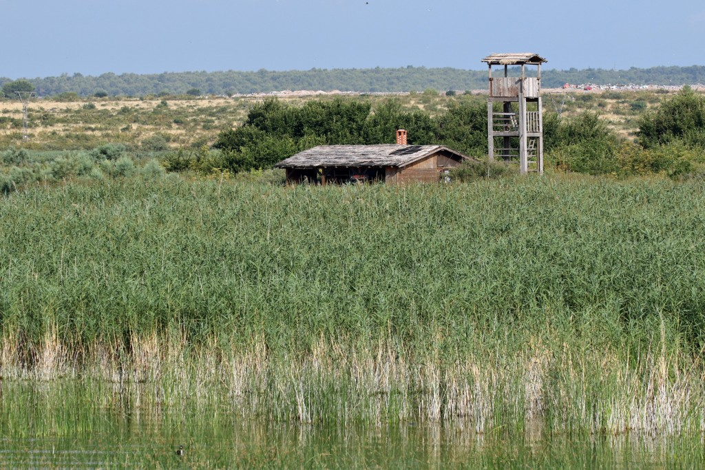 Ornitološka postaja u PP Vransko jezero