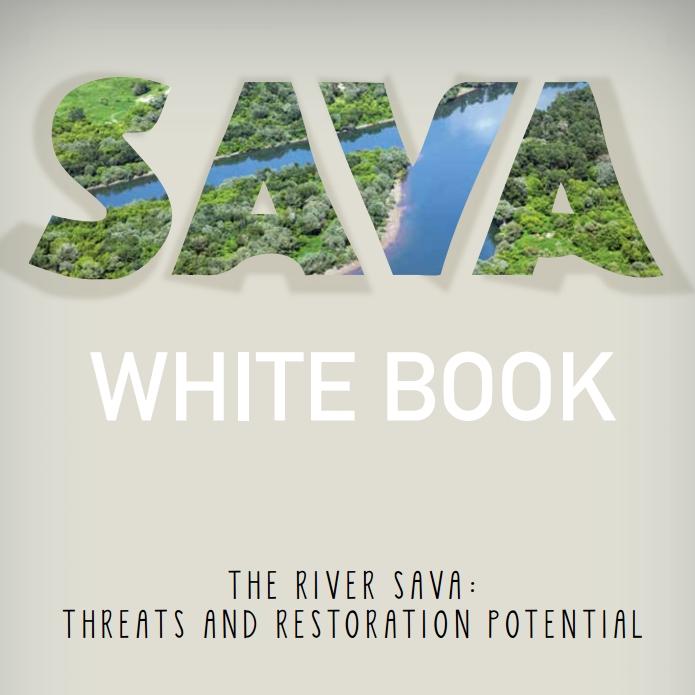 Bijela knjiga Save